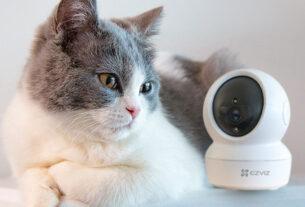 C6N+Cat-smart home security gadgets-techxmedia