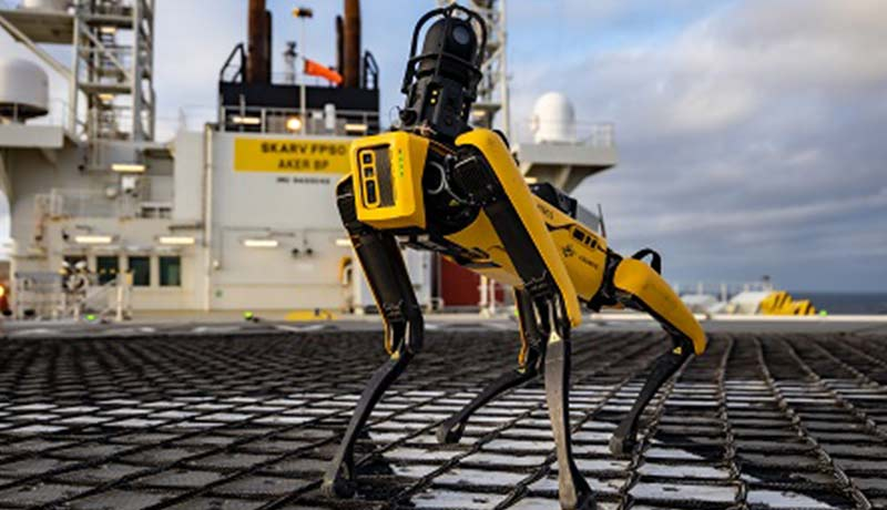 robotic dog-techxmedia