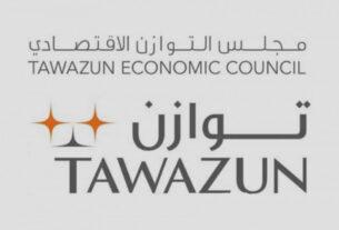 IDEX - NAVDEX - strategic partnership - Tawazun - TECHx