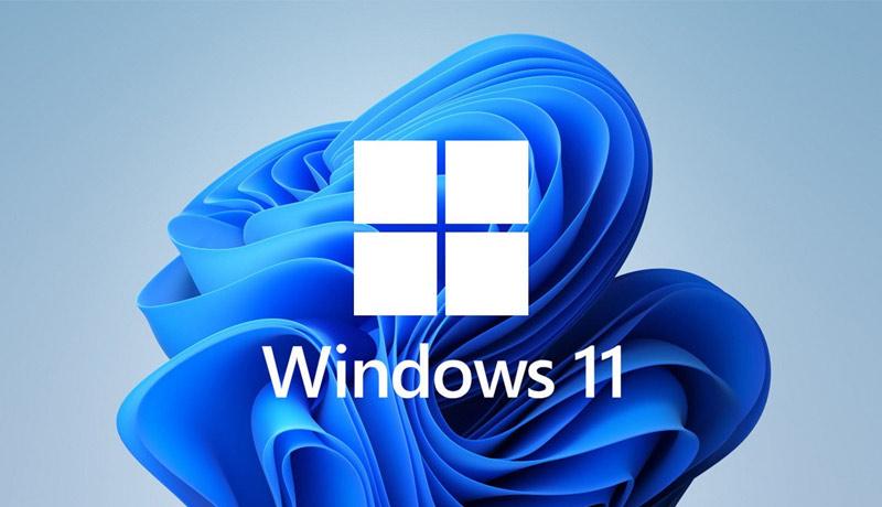 windows-11 - manual-installatoin - techxmedia